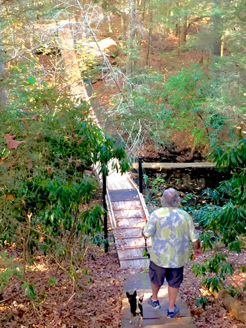Walking through the Tennessee Cumberland Mountain State Park