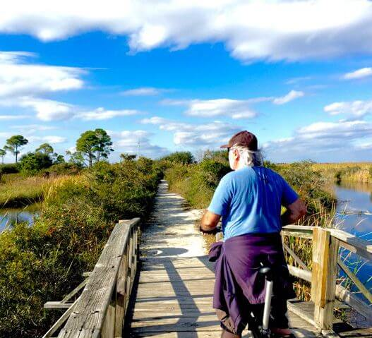 The back woods of Ft. Pickens