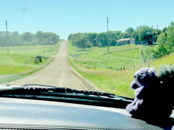Unpaved road to Wilde Prairie Winery