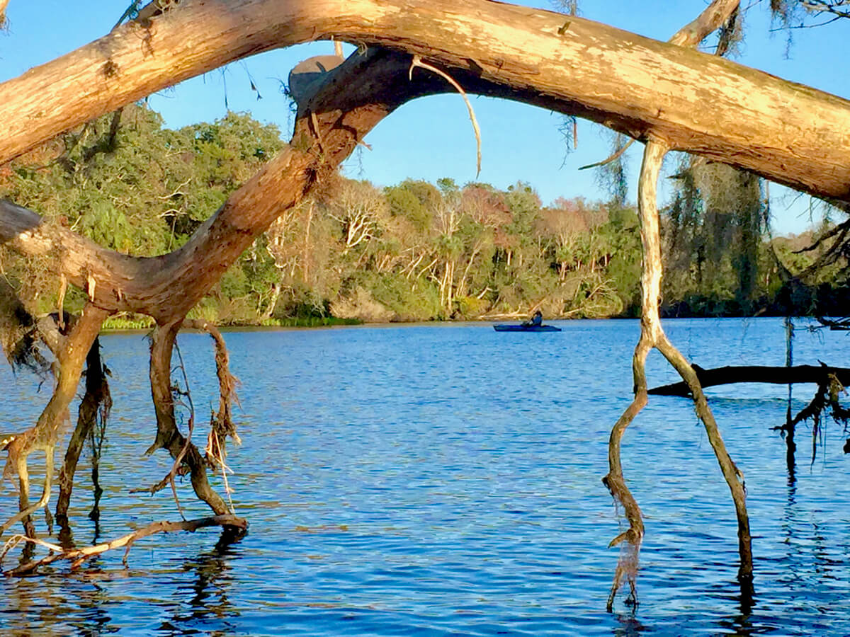 Chassahowitzka River, Homosassa, Florida