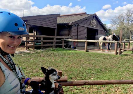 Disney World Fort Wilderness Horses