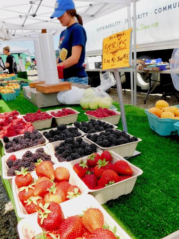 Millarville Farmer's Market