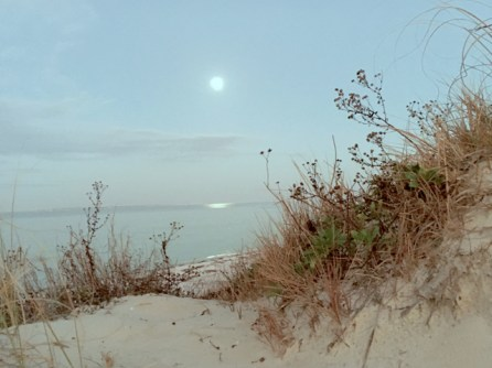 Evening at Ft. Pickens