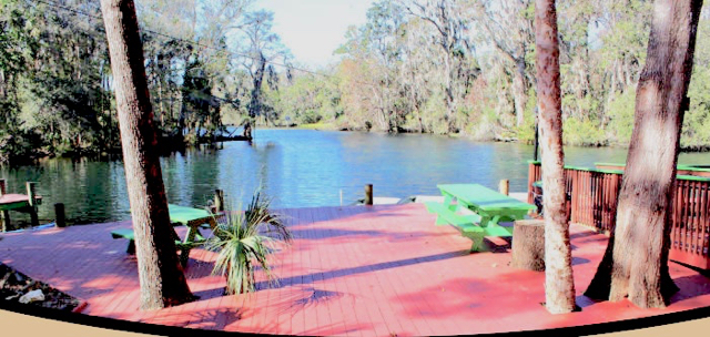 Great place to relax and watch manatees from the dock
