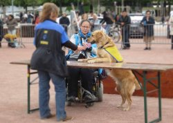 Service Dog demonstration Geneva