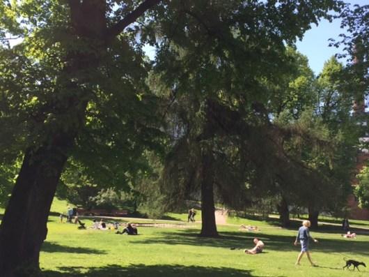 Park locals love in Helsinki