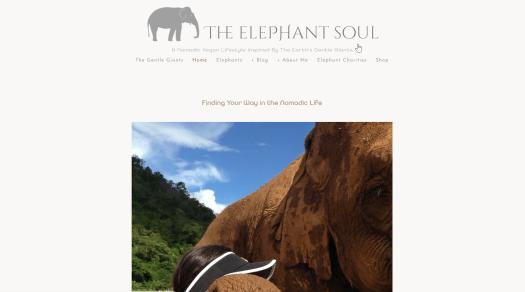 The Elephant Soul