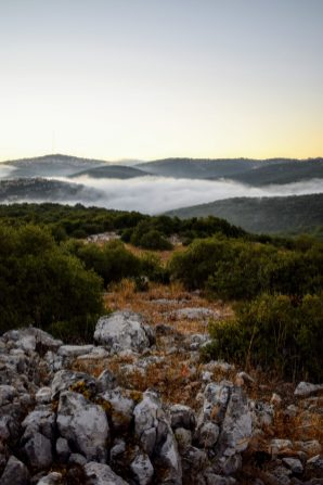 Sunrise at Ajloun Forest Reserve