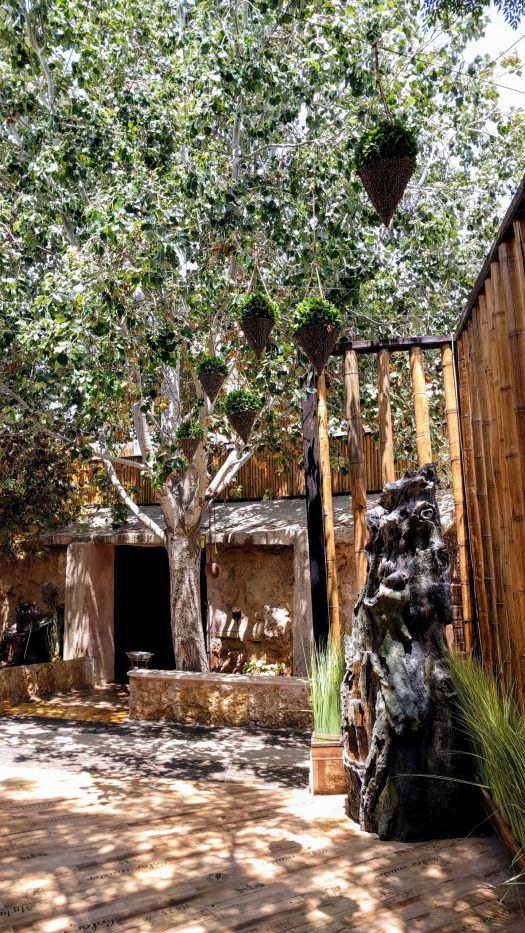 Tree at Restaurant