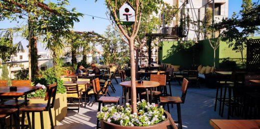 Highgarden Garden Rooftop