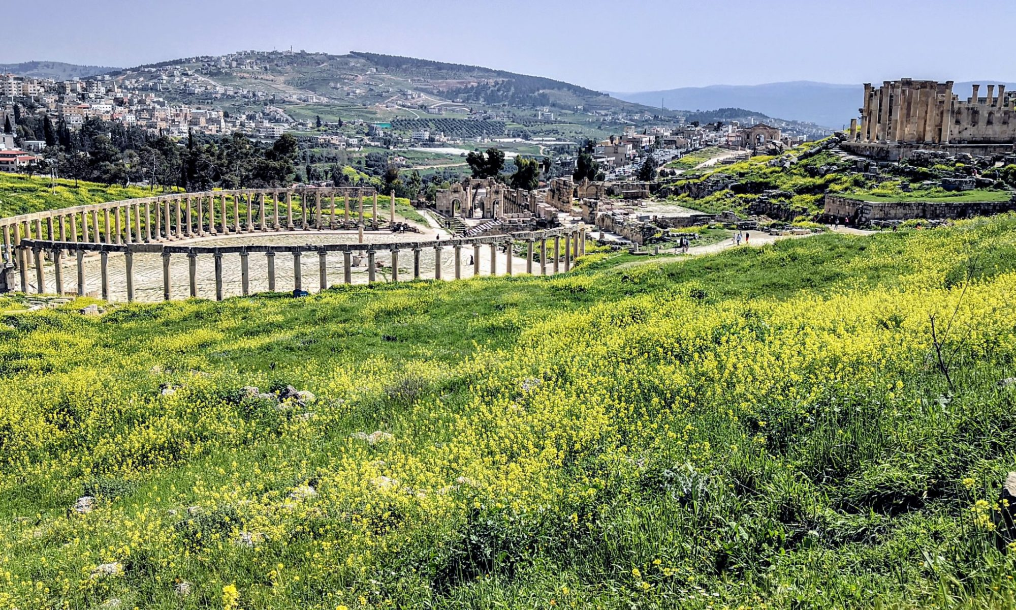 Ruins of the oval plaza with pillars surrounded by green and yellow flowers in the spring time