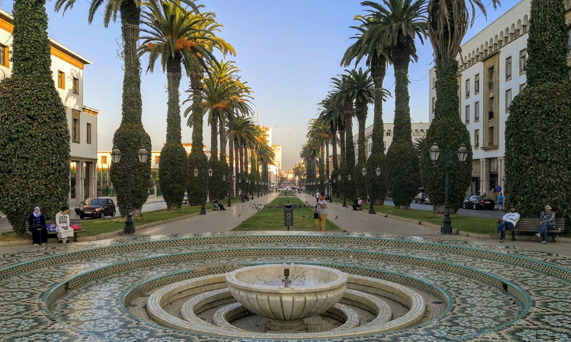An alley of palm trees and a fountain in the foreground in Rabat, Morocco