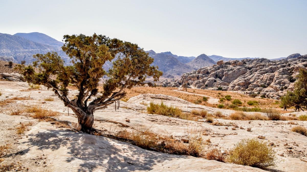 hiking Little Petra to Dana