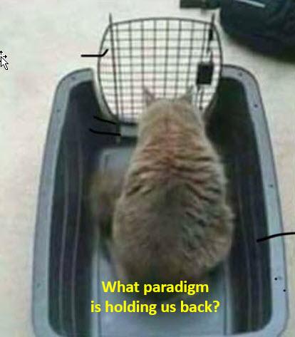 Limits of a Paradigm