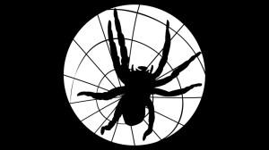 schwarze-spinne100-_v-img__16__9__xl_-d31c35f8186ebeb80b0cd843a7c267a0e0c81647