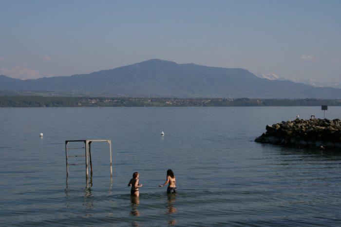 Duck fleas in the Geneva Lac