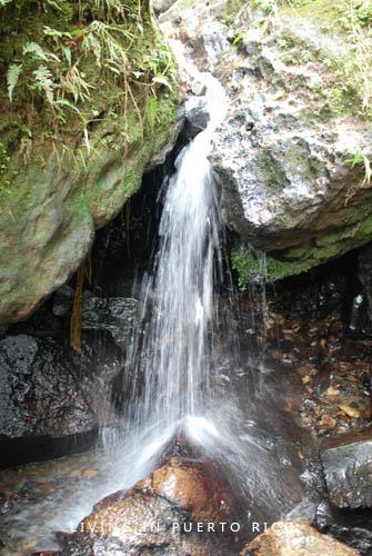 Waterfalls El Yunque