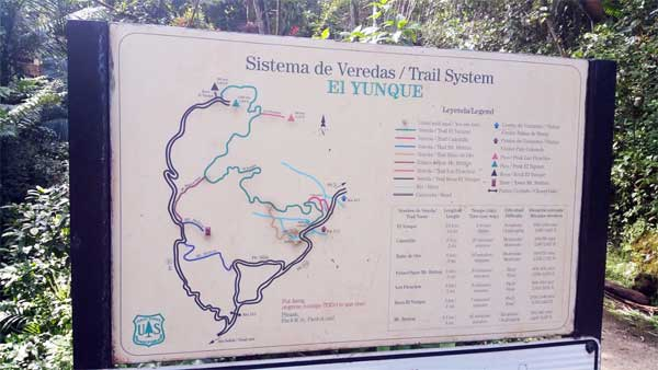El Yunque Trail Map