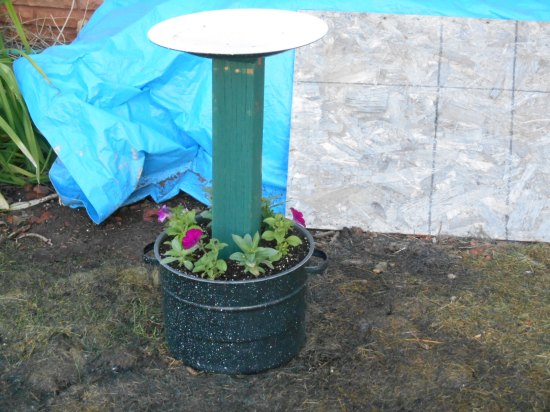 New planter with flowers!