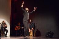 Male flamenco dancer at Flamallorca
