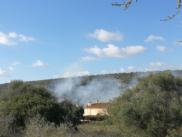 Bonfire smoke