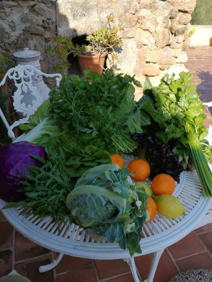 Delivered to our gates: a harvest-festival array of healthy stuff
