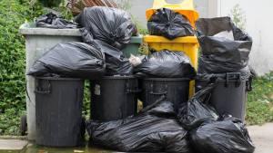 garbage[1]