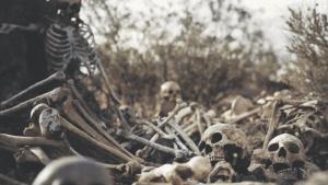 Dry-bones1