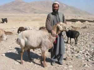 Afghanistan_12