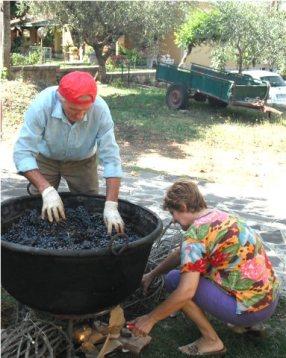 Preparing the grape harvest for jam