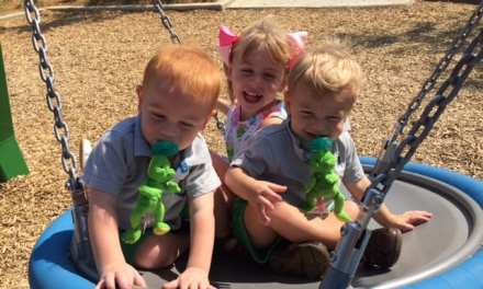 My Kids Love the New Playground in Bicentennial Park