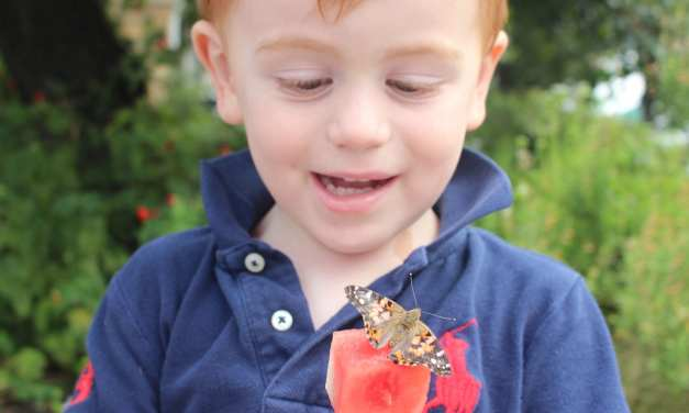 We Participated in a Butterfly Release