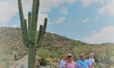 Tips for Visiting Saguaro National Park