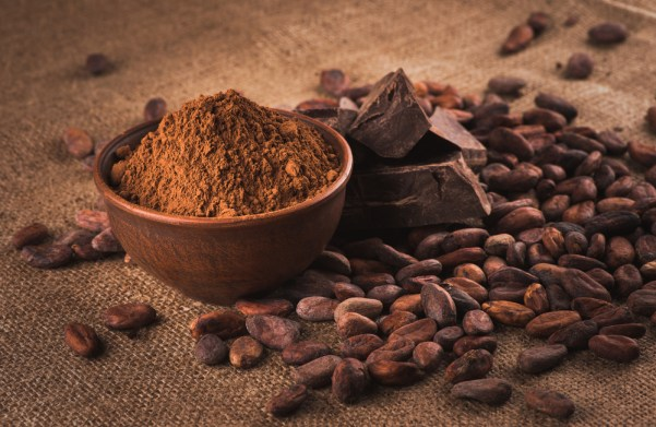 chocolate, cacao, theobromine,
