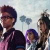 Marvel's Runaways Season 1 | Reactions | LIVING LIFE FEARLESS