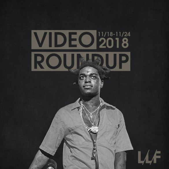 Video Roundup 11/18-11/24   Reactions   LIVING LIFE FEARLESS