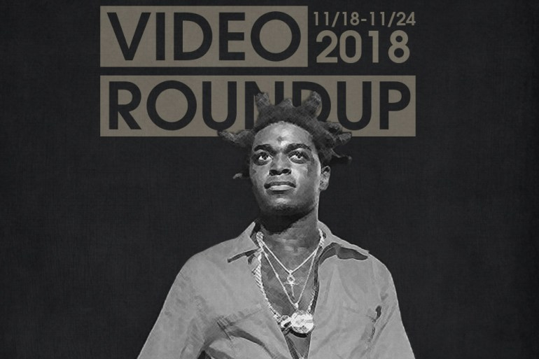 Video Roundup 11/18-11/24 | Reactions | LIVING LIFE FEARLESS