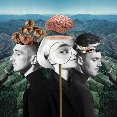Clean Bandit - What Is Love?   Reactions   LIVING LIFE FEARLESS
