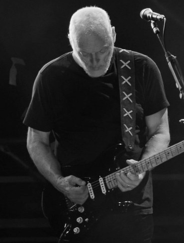 David Gilmour of Pink Floyd Auctions Off A Guitar Collection And Donates The Money to Climate Change Charity | News | LIVING LIFE FEARLESS
