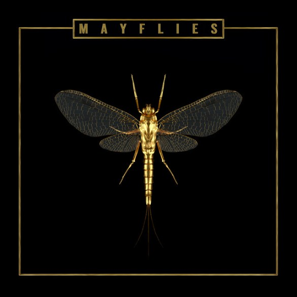 The Bergamot - 'Mayflies' | Opinions | LIVING LIFE FEARLESS