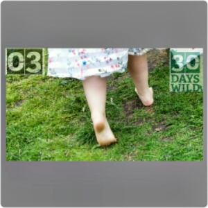 30 Days Wild- Day 3: Grounding