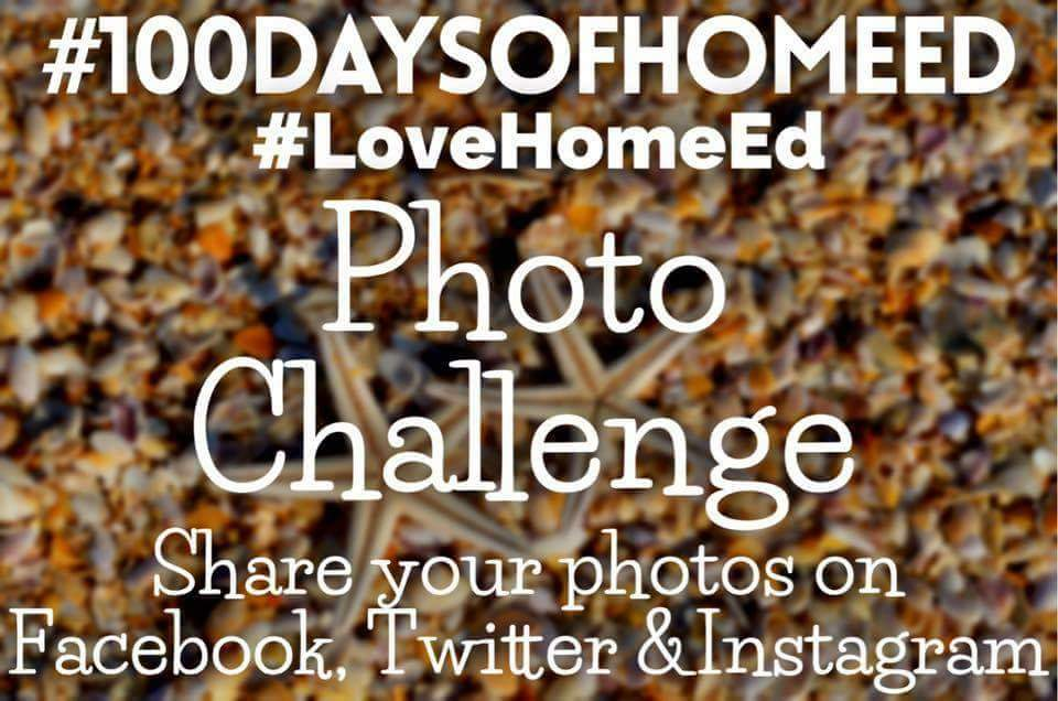 100 Days of Home Ed #LoveHomeEd – Day 13 (Rambling Violets)