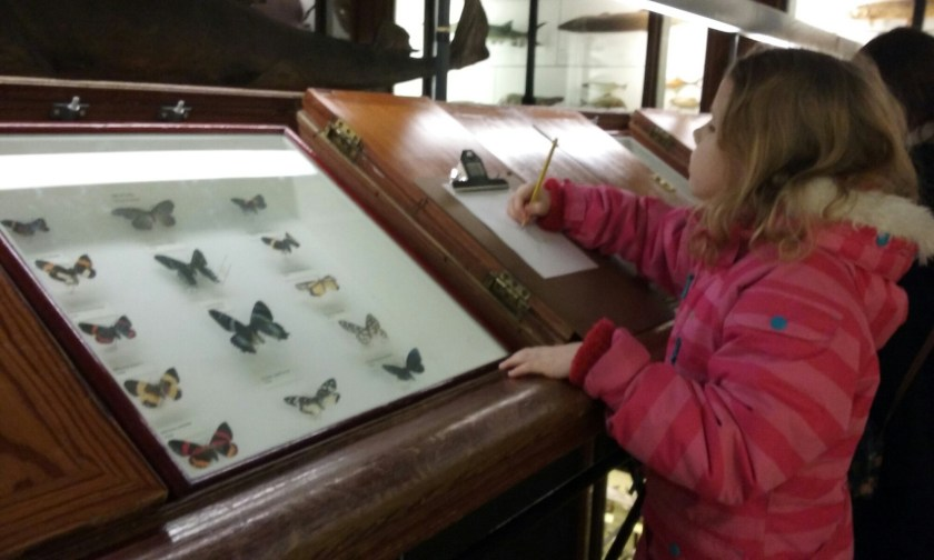 #100daysofhomeed, #LoveHomeEd, 100 days of home ed, Living Life Our Way, freedom to learn, guest post, Home Education, Tring museum
