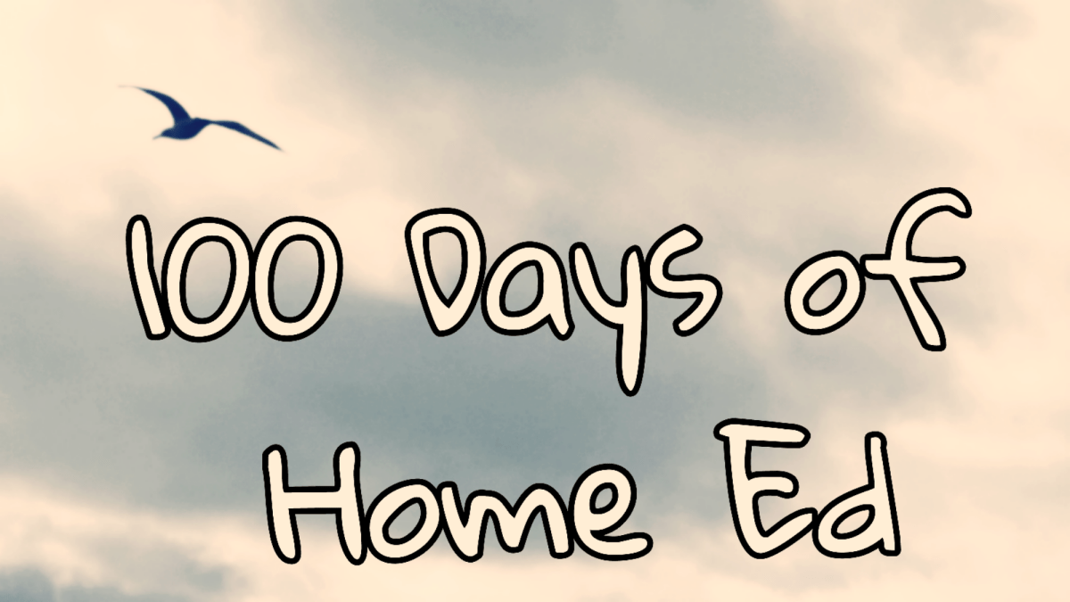 100 Days of Home Ed #LoveHomeEd – Day 42 (With a Hop, Skip and a Jump)