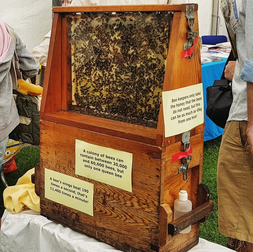 Beekeepers, local honey, family fun day, #LivingLifeWild, #30DaysWild, 30 Days Wild, The Wildlife Trusts, wildlife, nature