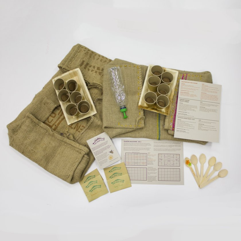 A picture of the salad kit contents.