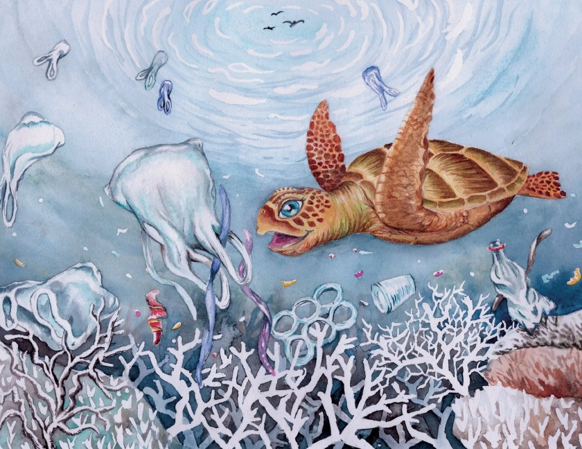 A picture of Duffy the Sea Turtle swallowing a plastic bag. One of the beautiful illustrations from the book.