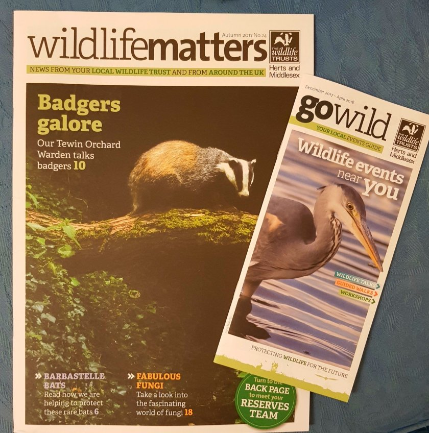 Wildlife Matters magazine and Go Wild leaflet by The Wildlife Trusts
