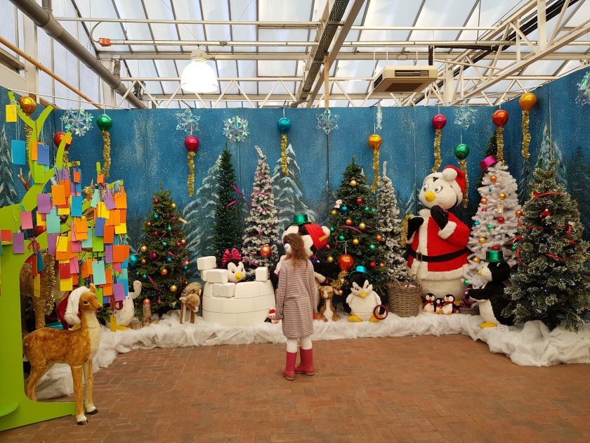Colourful festive Christmas display Burston Garden Centre St Albans