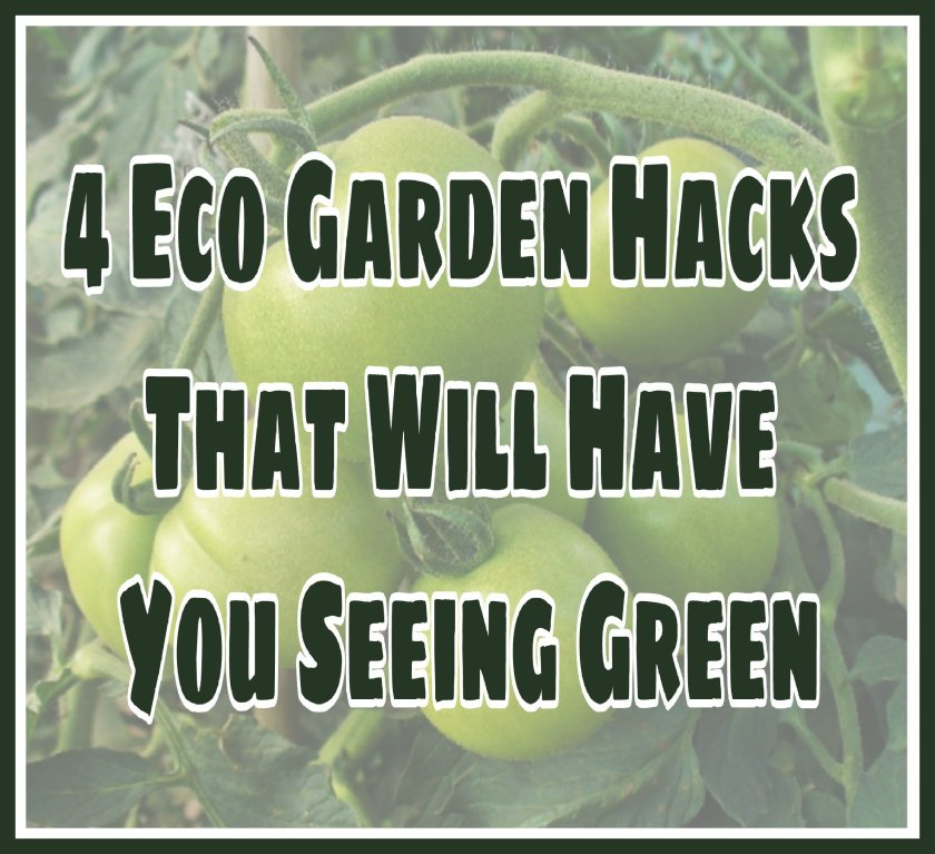 4 Eco Garden Hacks That Will Have You Seeing Green title on faded background image